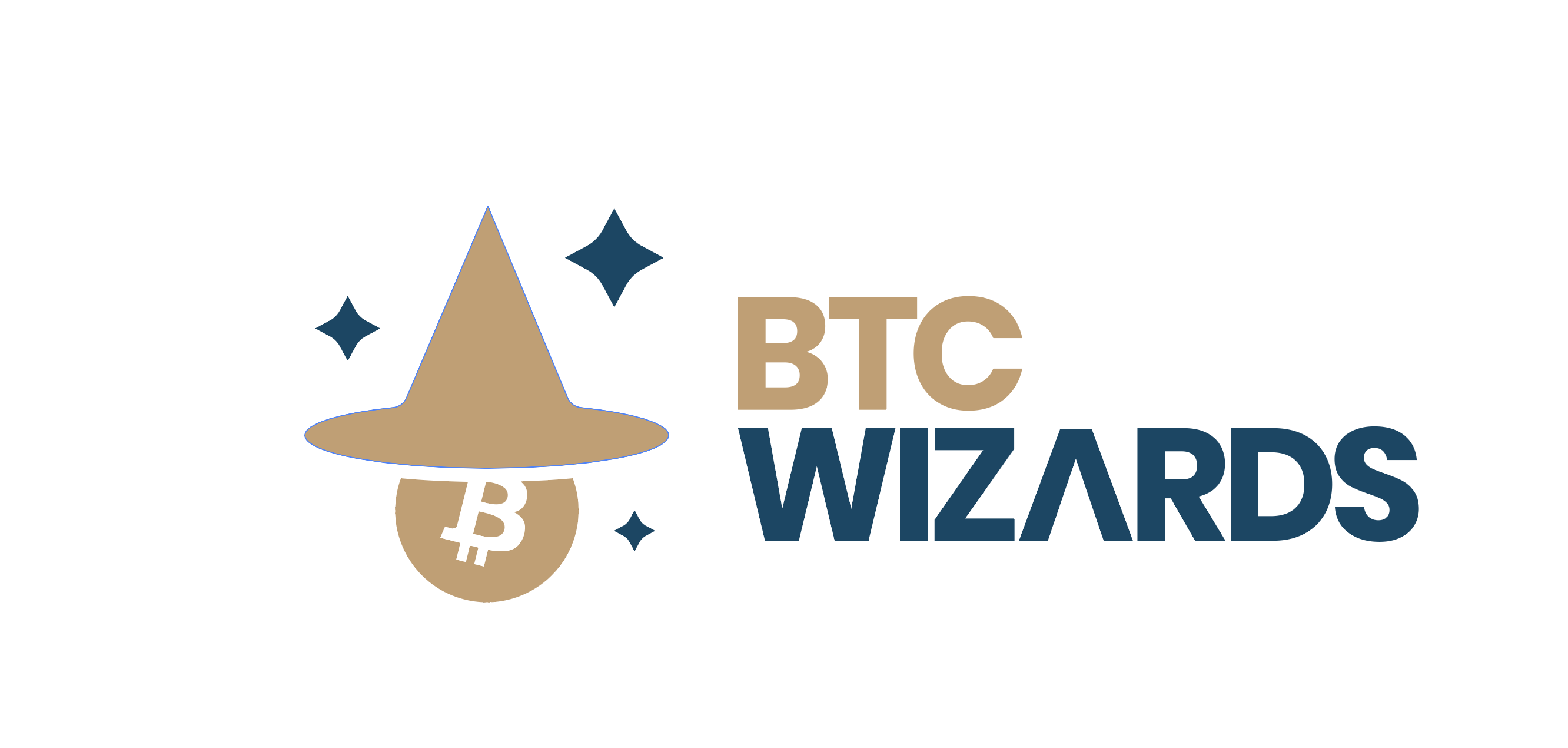 BTC Wizards LLC
